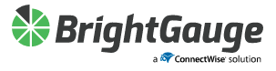 Bright gauge logo